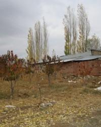 Doğanşehir Evleri
