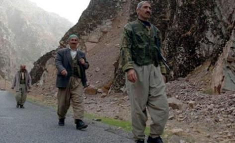 Türkiye de 46 Bin Köy Korucusu Var