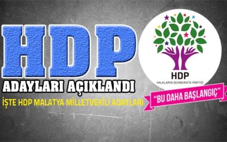 HDP'nin Malatya Milletvekili Adayları