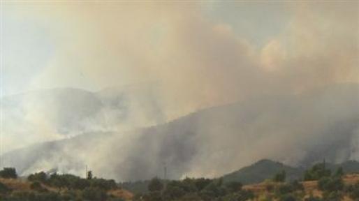 Son Dakika Doğanşehir  Kapıderede Köyünde  Orman Yangını