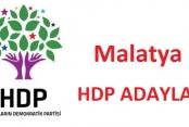 27. Dönem Milletvekili  Seçimi Malatya HDP Adayları