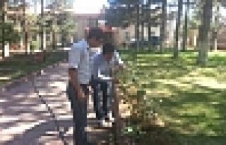 Doğansehir İlçe Tarım Personeli Park Ve Bahçe...