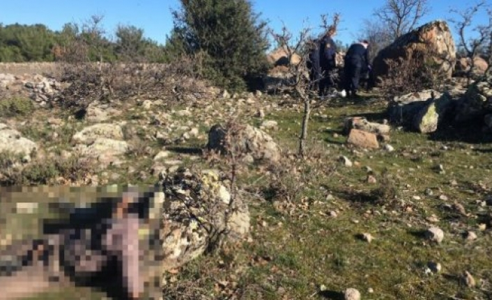 Doğanşehir 10 gündür aranan şahıs ölü bulundu